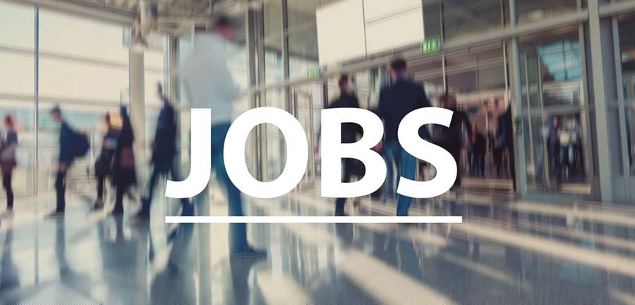 job expos